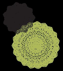 Mandala image for Kayhan Ghodsi
